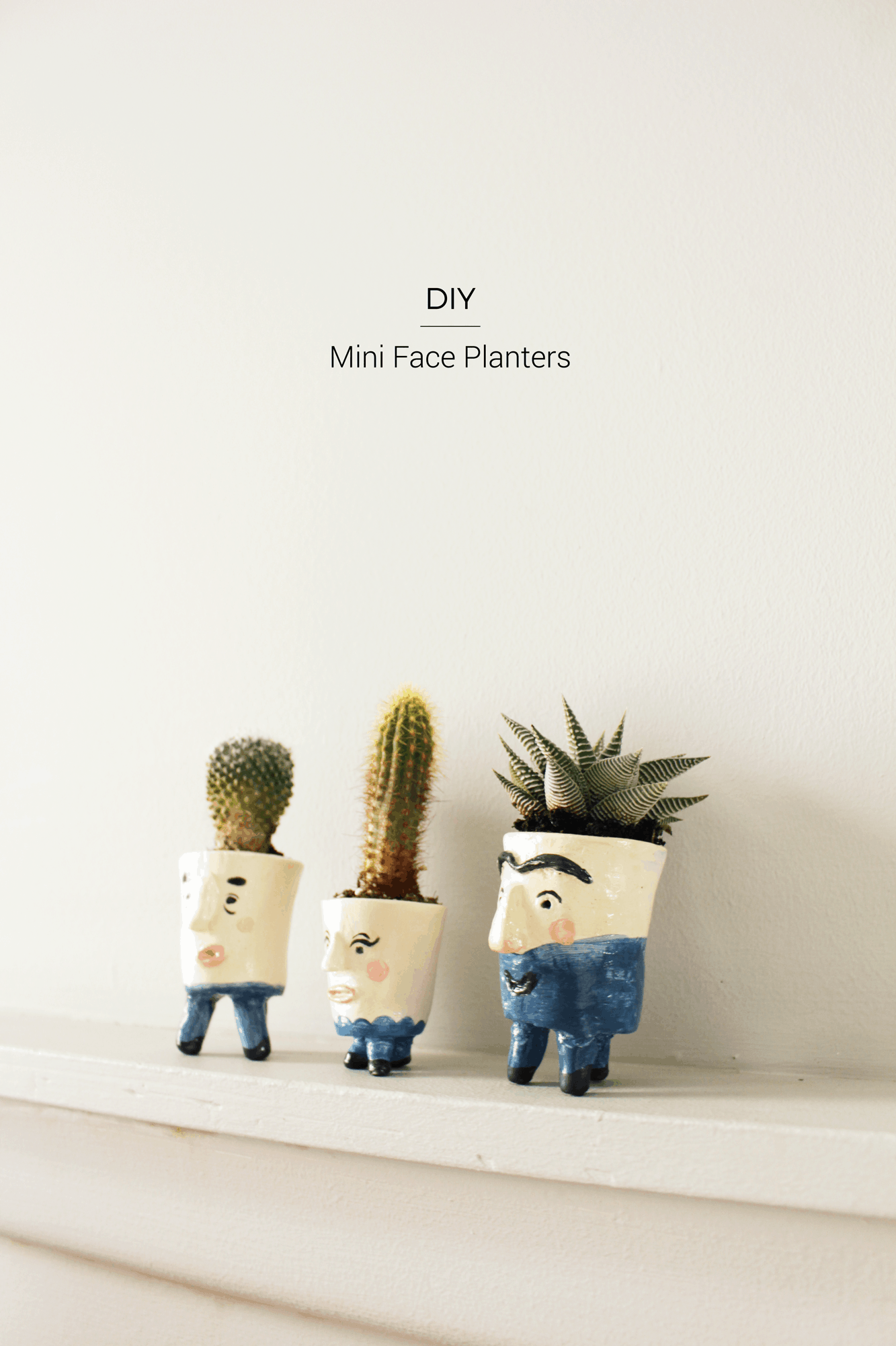 DIY Mini Face Planters